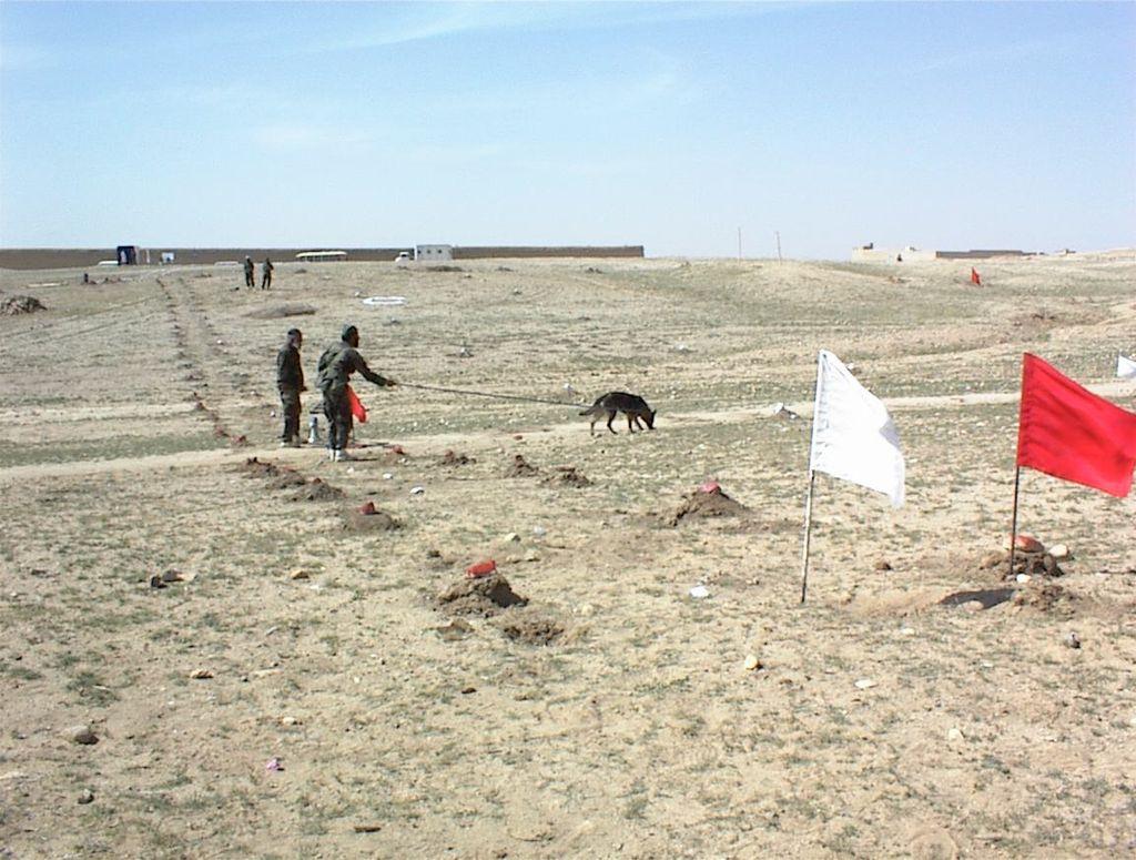 Dog Center Bergerland Nordkirchen - Minenspürhund Einsatz Afghanistan